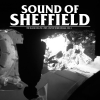 dustv: [dustv043] Sound Of Sheffield Vol. 04 by The Black Dog