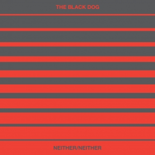 [dustv051] Neither / Neither (Limited Vinyl) by The Black Dog